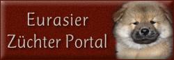 Eurasier Züchter Portal